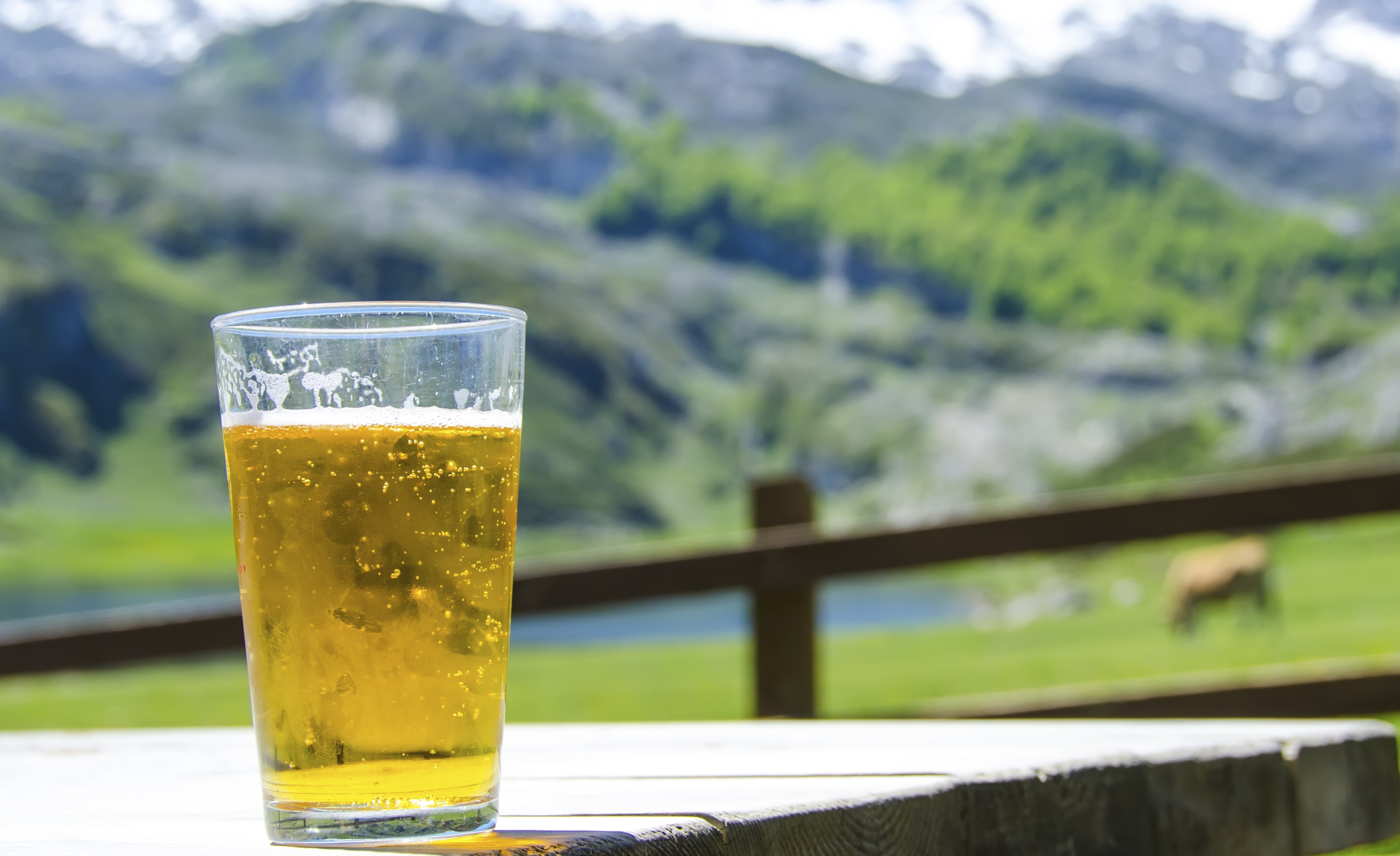 Beer RATIONED during World Cup amid 'worst CO2 shortage in decades'